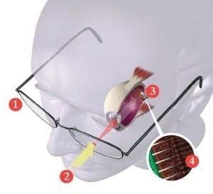 Syri bionik që u jep pamje bardhë e zi të verbërve