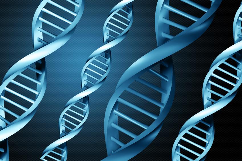 Shkencëtarët arrijnë të ruajnë 704TB të dhëna në një gram ADN-je