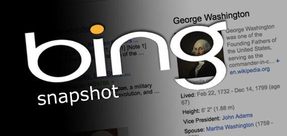 Bing snapshot