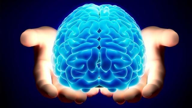 Harta e trurit