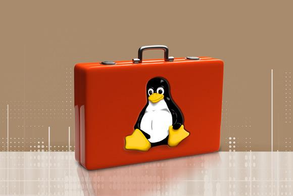 Sipas ekspertëve, tashmë është koha më e mirë për të pasur njohuri mbi Linux