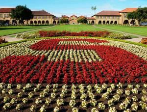 Universiteti i Stanford-it investon në nismat e studentëve
