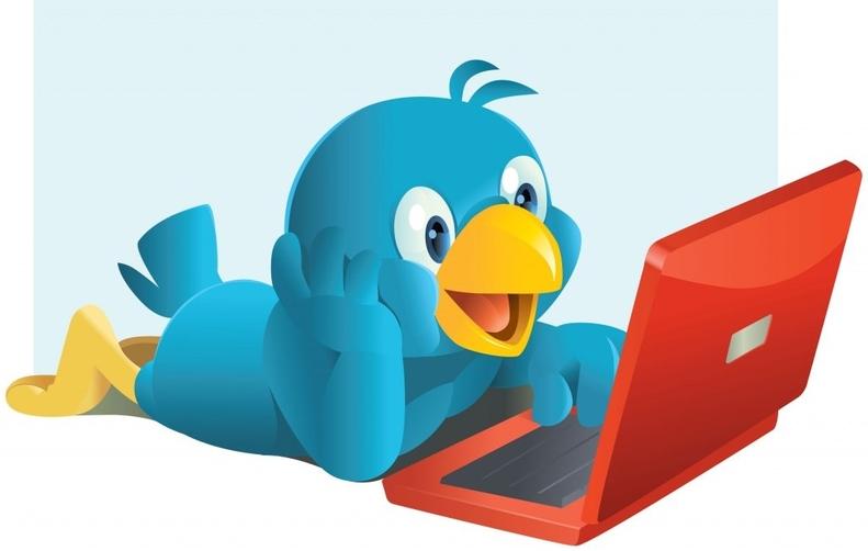 Kush janë profilet e më shumë se 218 milion përdoruesve të Twitter-it (Infografik)