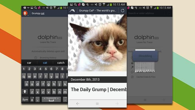 Dolhpin Zero është një shfletues tërësisht për privatësi në Android