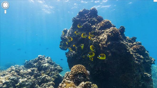 Google Maps hyn në botën e thellë të oqeaneve