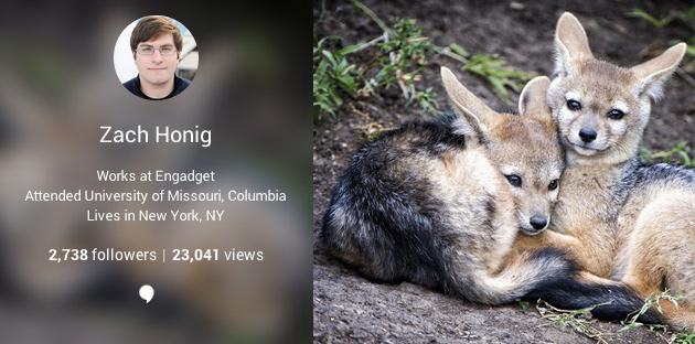 Google+ shton numëruesin e shikimeve në faqe për profilet e përdoruesve
