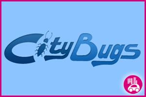 13_CityBugs