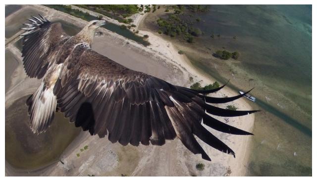 4 fotografi mahnitëse realizuar nga kamera e një droni