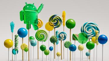 lollipop-forest