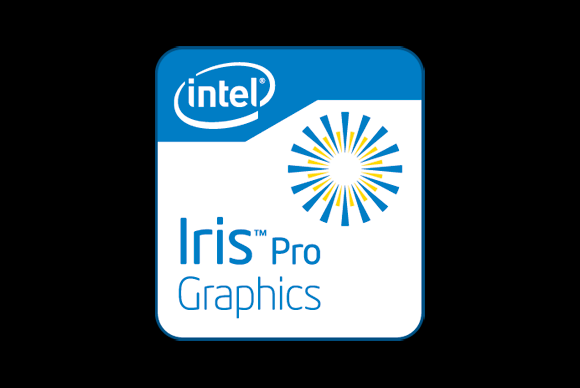 iris-pro-100571663-large