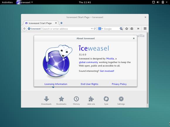 debian-iceweasel-browser-100581401-large