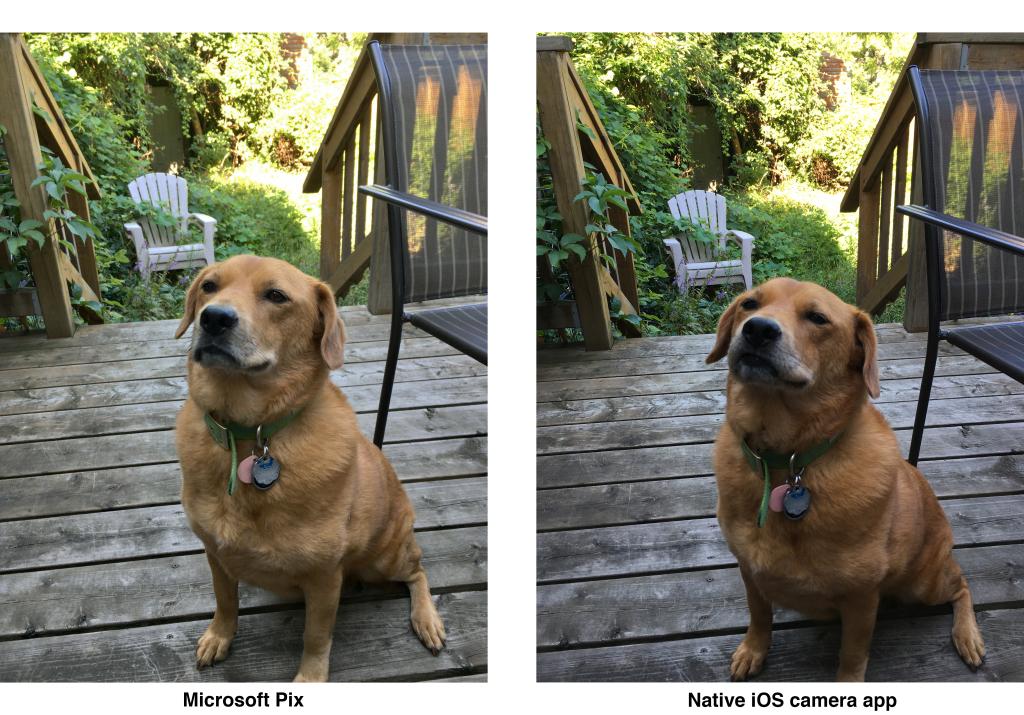 Microsoft Pix shfrytëzon inteligjencën artificiale për realizuar foto të cilësisë së lartë nga kamera e iPhone