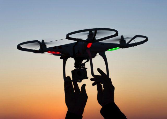 Policia holandeze trajnon shqiponja për ekipin e tyre anti-dron